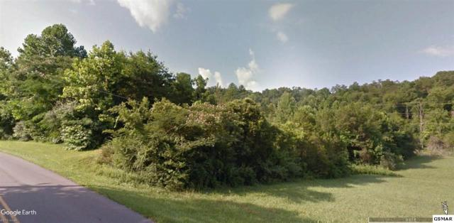 W Mill Creek Road Parcels 181.02 , Pigeon Forge, TN 37863 (#217926) :: The Terrell Team