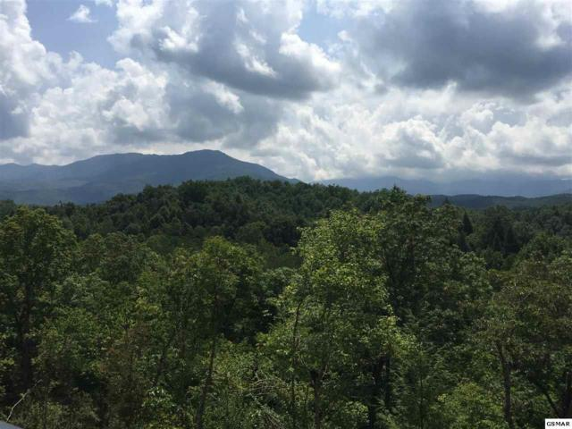 E East Parkway, Gatlinburg, TN 37738 (#217942) :: Four Seasons Realty, Inc