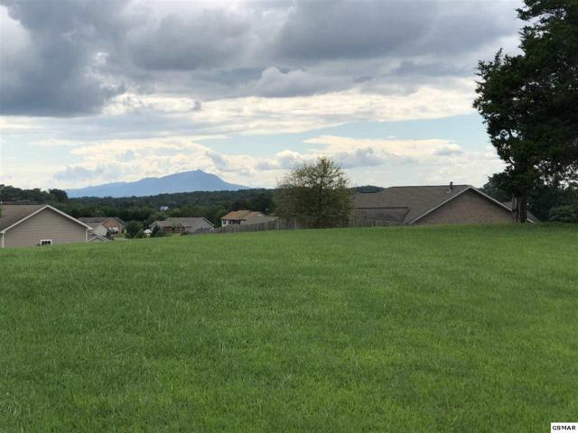 Lot 69 English Hills Drive, Sevierville, TN 37862 (#217954) :: The Terrell Team