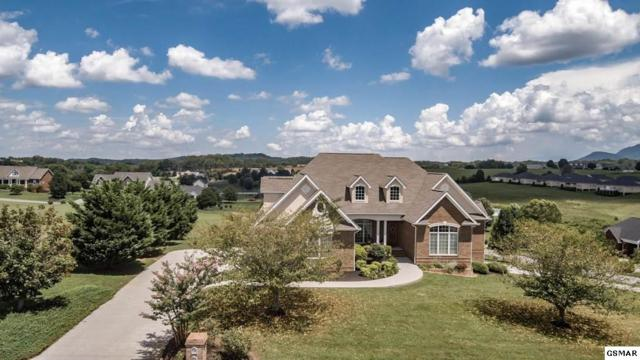 440 Winners Circle, Seymour, TN 37865 (#217957) :: Billy Houston Group