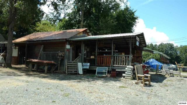 3358 Cosby Highway, Cosby, TN 37722 (#217962) :: Billy Houston Group
