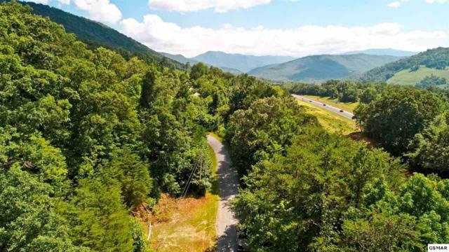 LOT 5 Acres Dr, Newport, TN 37821 (#217965) :: Billy Houston Group