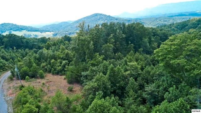 LOT 26 Romary Rd, Newport, TN 37821 (#217966) :: Billy Houston Group