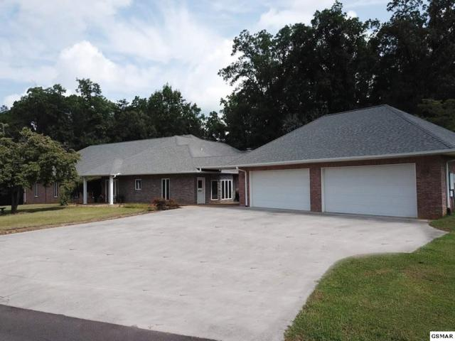 1317 Americana Drive, Pigeon Forge, TN 37863 (#217972) :: Colonial Real Estate