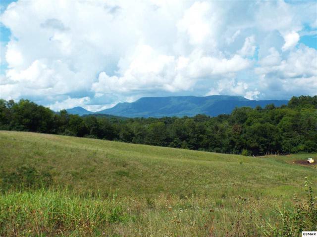Lot 5 Farm Road, Newport, TN 37821 (#217976) :: Billy Houston Group