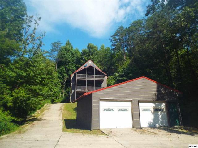 919 Powdermill Road, Gatlinburg, TN 37738 (#217977) :: Billy Houston Group