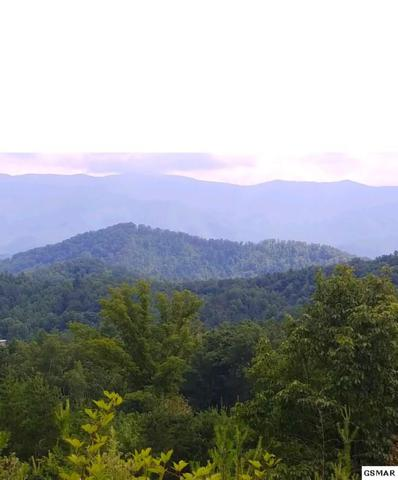 032 00 Yellow Britches Rd 116 Acres, Sevierville, TN 37876 (#217979) :: Colonial Real Estate