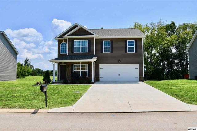 2676 Southwinds Cir, Sevierville, TN 37876 (#217998) :: Colonial Real Estate