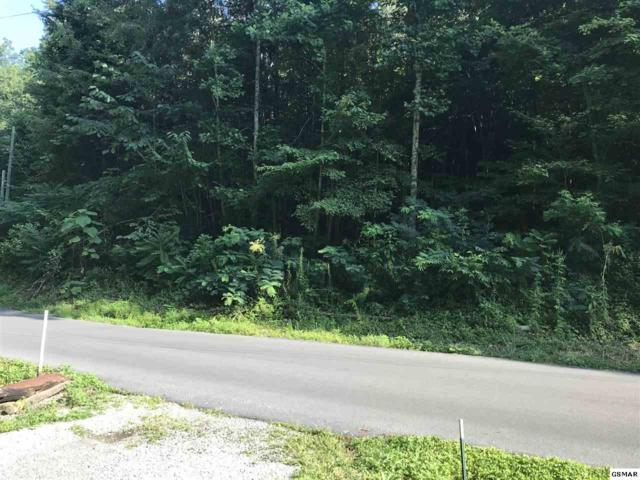 Lot 1918 Rose Pass, Sevierville, TN 37876 (#218026) :: Colonial Real Estate