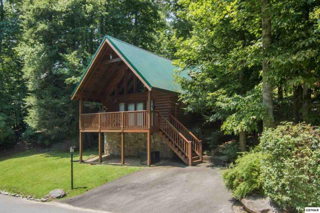 623 Black Bear Falls Way, Gatlinburg, TN 37738 (#218029) :: Colonial Real Estate