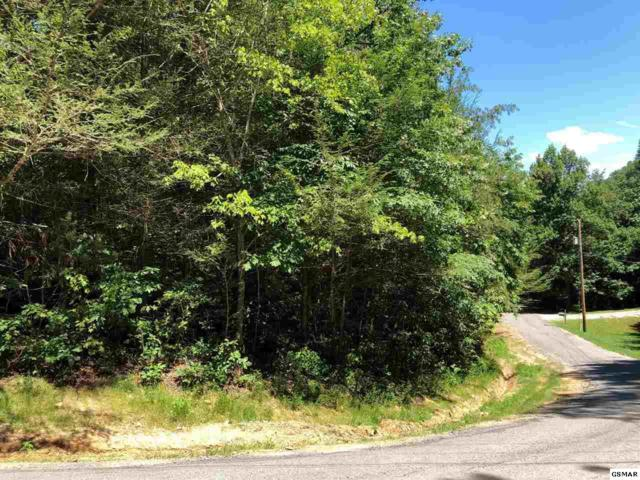 Lot 56 Cove Hollow Road, Cosby, TN 37722 (#218032) :: Billy Houston Group