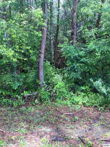 lot 51 Arch Rock, Sevierville, Tn, TN 37876 (#218063) :: Billy Houston Group
