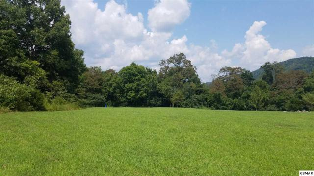 Lot 14 Wind Ridge Dr, Rogersville, TN 37857 (#218064) :: Billy Houston Group