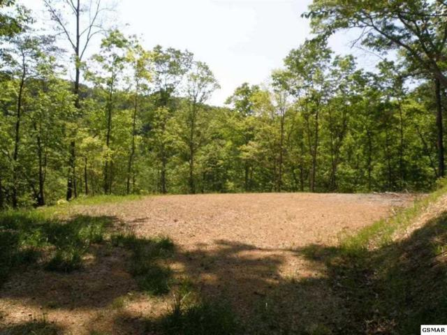 LOT 17 & 18 Hwy 25 E, Newport, TN  (#218110) :: The Terrell Team