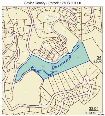Lot 9 Abram Falls Way, Gatlinburg, TN 37738 (#218118) :: Billy Houston Group