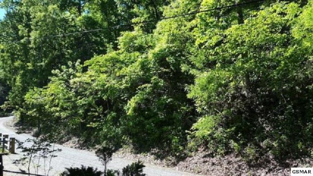 Lot Lot Lot 11 Emerald Springs Loop, Sevierville, TN 37862 (#218131) :: Billy Houston Group