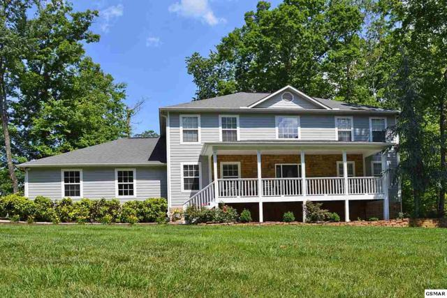 1610 Riceland Dr, Sevierville, TN 37862 (#218141) :: Billy Houston Group