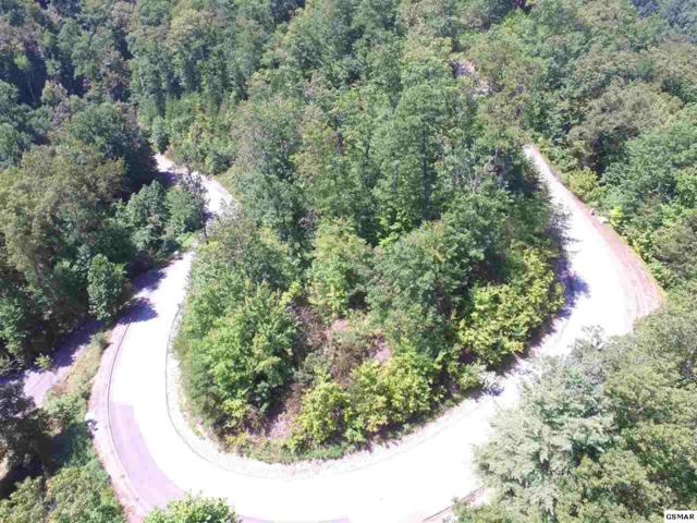Lot 61 Whetstone Rd, Sevierville, TN 37862 (#218171) :: Billy Houston Group