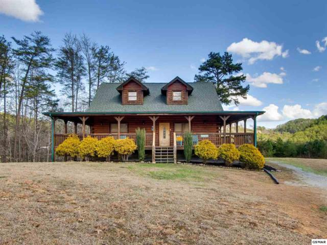 1430 Nicoha Blvd, Sevierville, TN 37876 (#218186) :: Colonial Real Estate