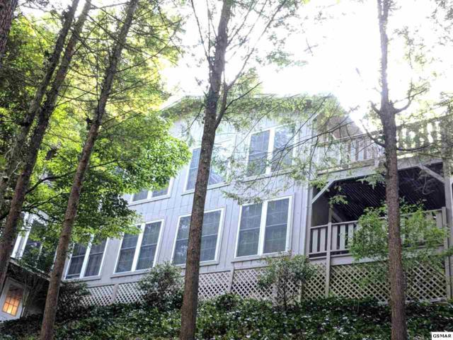 340 Washington Rd, Gatlinburg, TN 37738 (#218203) :: Billy Houston Group