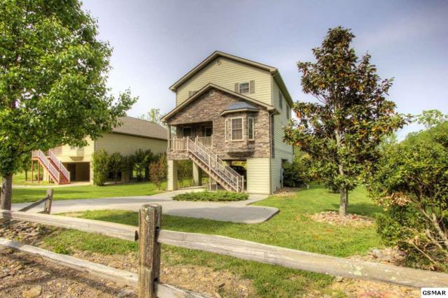 3116 Cherokee Valley Dr Cherokee Valley, Sevierville, TN 37862 (#218219) :: Colonial Real Estate