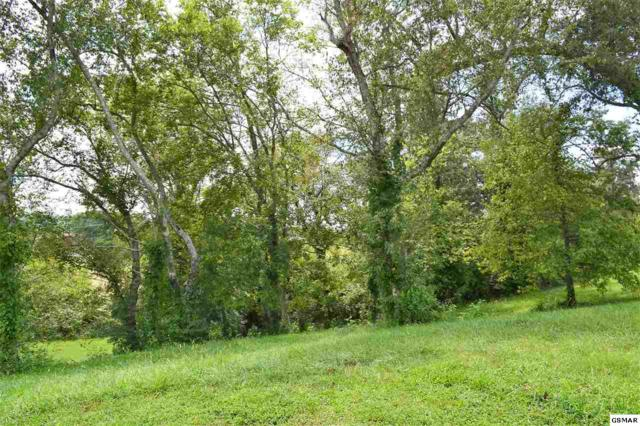 Lot 1 Rippling Waters Cir, Sevierville, TN 37876 (#218222) :: Prime Mountain Properties