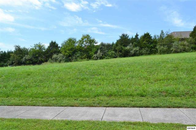 Lot 18 Rippling Waters Circle, Sevierville, TN 37876 (#218223) :: The Terrell Team