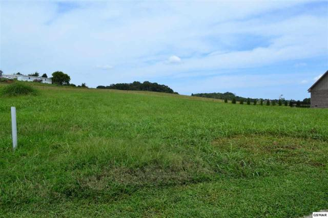 Lot 27 Rippling Waters Circle, Sevierville, TN 37876 (#218224) :: The Terrell Team