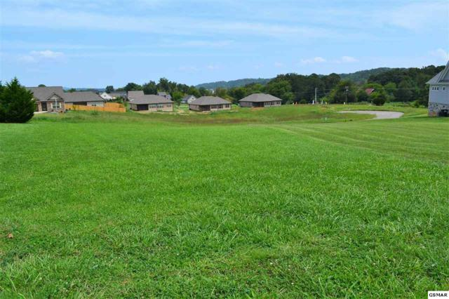 Lot 40 Rippling Waters Circle, Sevierville, TN 37876 (#218225) :: The Terrell Team