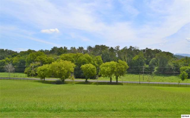 Lot 44 Rippling Waters Circle, Sevierville, TN 37876 (#218226) :: Prime Mountain Properties