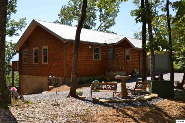 1334 Rocky Flats Rd, Cosby, TN 37722 (#218244) :: Four Seasons Realty, Inc