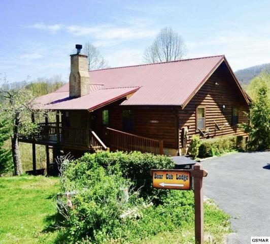 2409 Walnut Cove Way Bear Cub Lodge, Sevierville, TN 37862 (#218287) :: Billy Houston Group