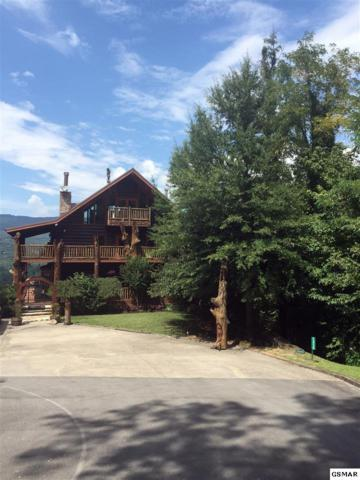 2450 Dove View Rd, Sevierville, TN 37862 (#218294) :: Billy Houston Group