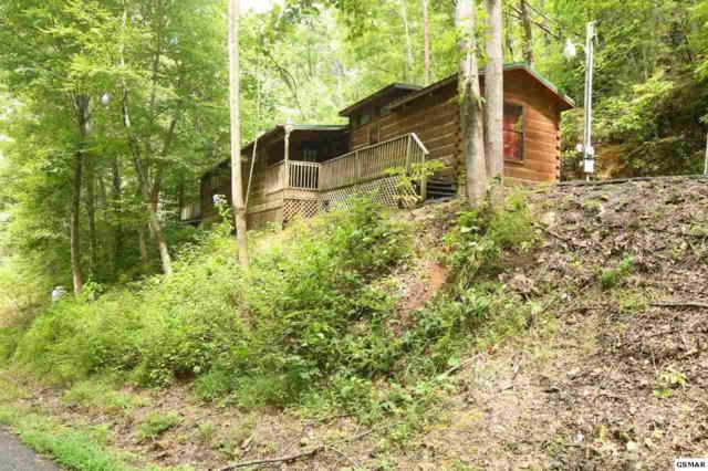 1705 W Ski View Dr, Sevierville, TN 37876 (#218332) :: Billy Houston Group