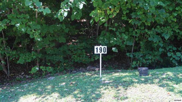 Lot 190 Hawks Nest Way, Sevierville, TN 37862 (#218339) :: Billy Houston Group