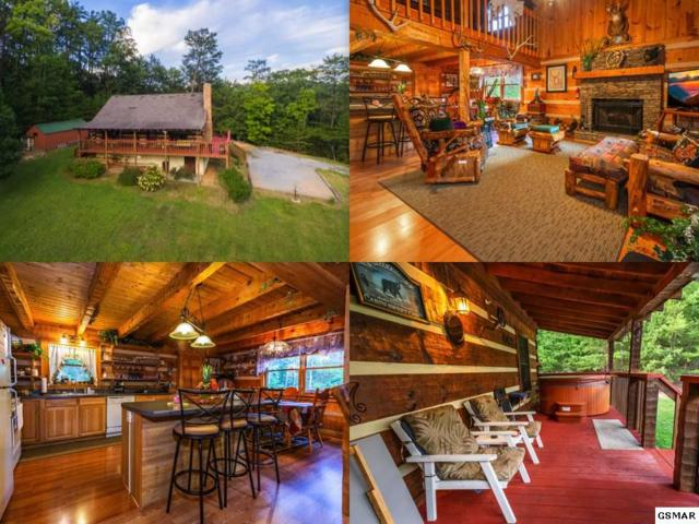 1681 Scenic Woods Way, Sevierville, TN 37876 (#218345) :: Billy Houston Group