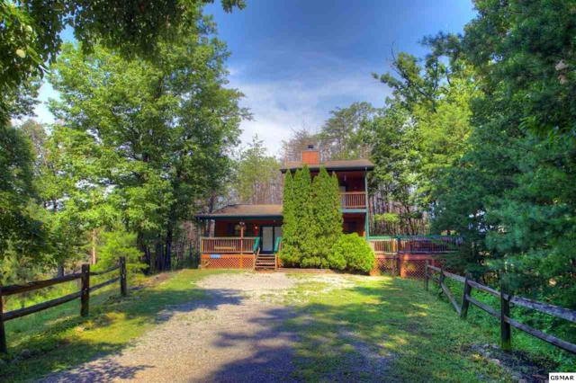 2114 Rabbit Point Way Tail Feathers, Sevierville, TN 37876 (#218346) :: Billy Houston Group