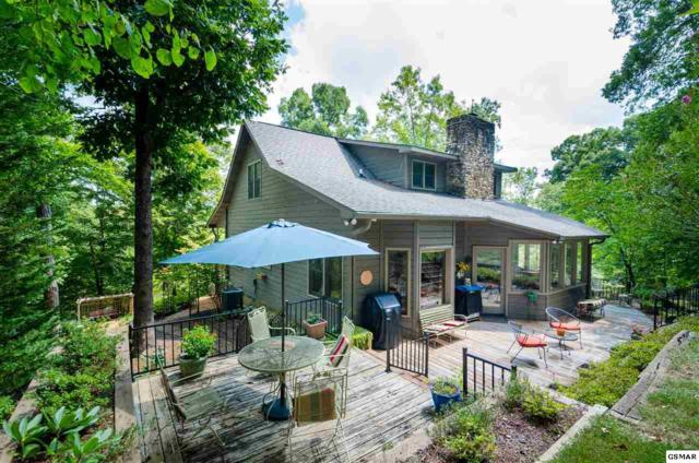 296 Lane Hollow Road, Sevierville, TN 37876 (#218353) :: Colonial Real Estate