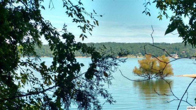 LOT 6 Stokley Ct, Dandridge, TN 37725 (#218359) :: Four Seasons Realty, Inc