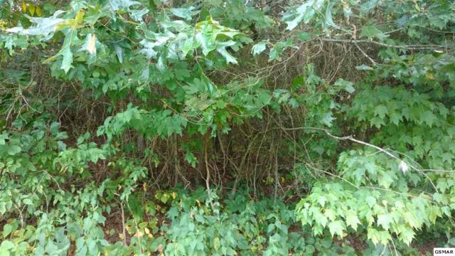 LOT 9A Ridge Ln, Sevierville, TN 37876 (#218363) :: Colonial Real Estate