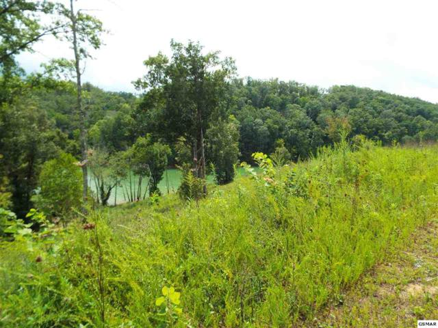 Lot 4 Stone Cove Way, Dandridge, TN 37725 (#218391) :: Billy Houston Group