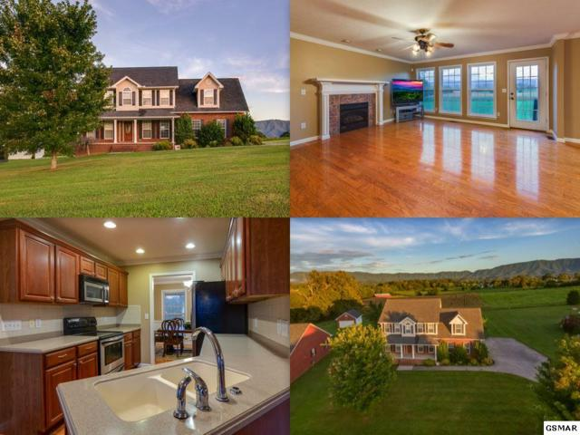 1531 Brahman Ln, Seymour, TN 37865 (#218416) :: Colonial Real Estate