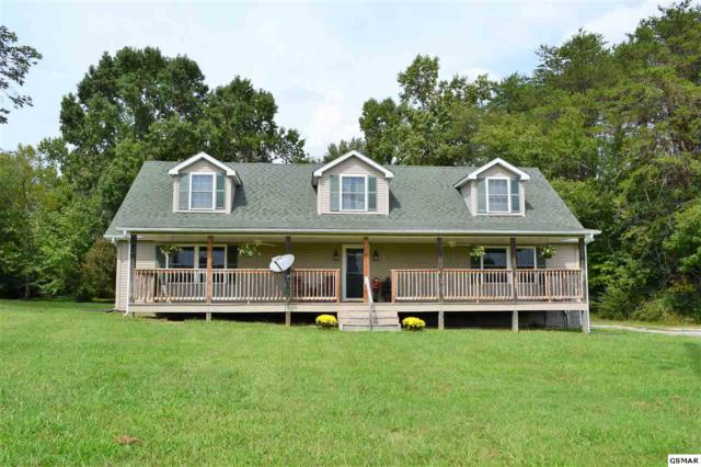 1030 S Old Sevierville Pike, Seymour, TN 37865 (#218435) :: Colonial Real Estate
