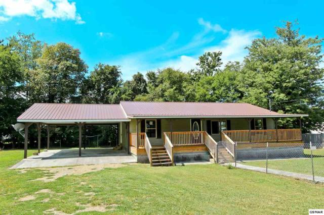 1575 W Highway 25-70, Newport, TN 37821 (#218445) :: SMOKY's Real Estate LLC