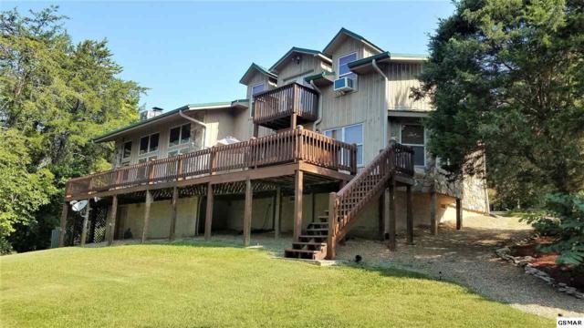 1315 Lake Front Dr, Dandridge, TN 37725 (#218447) :: Four Seasons Realty, Inc