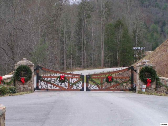 Chetola Trail, Townsend, TN 37882 (#218459) :: Colonial Real Estate
