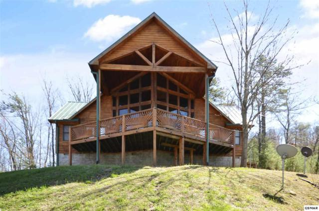 3321 Shagbark Hickory Rdg, Sevierville, TN 37862 (#218467) :: Billy Houston Group