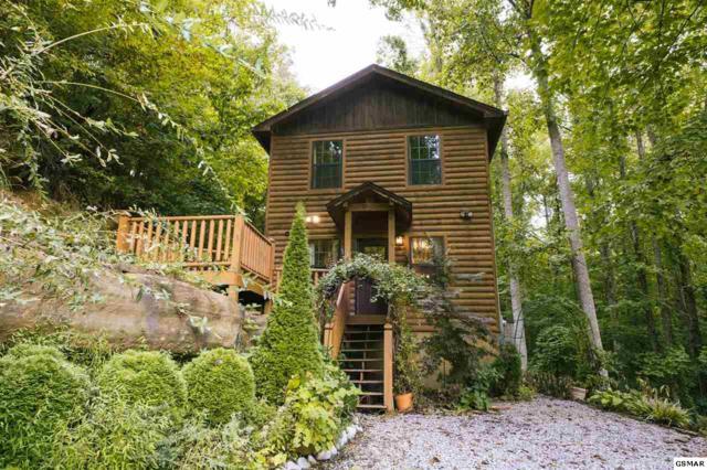 746 Bear Hollow Way, Sevierville, TN 37876 (#218475) :: Billy Houston Group