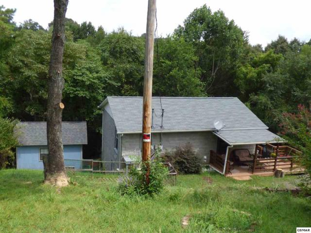 424 Hayes Dr, Kodak, TN 37764 (#218476) :: Colonial Real Estate