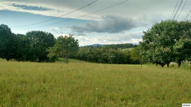 51 Acres N Highway 340, Parrottsville, TN 37843 (#218509) :: Billy Houston Group